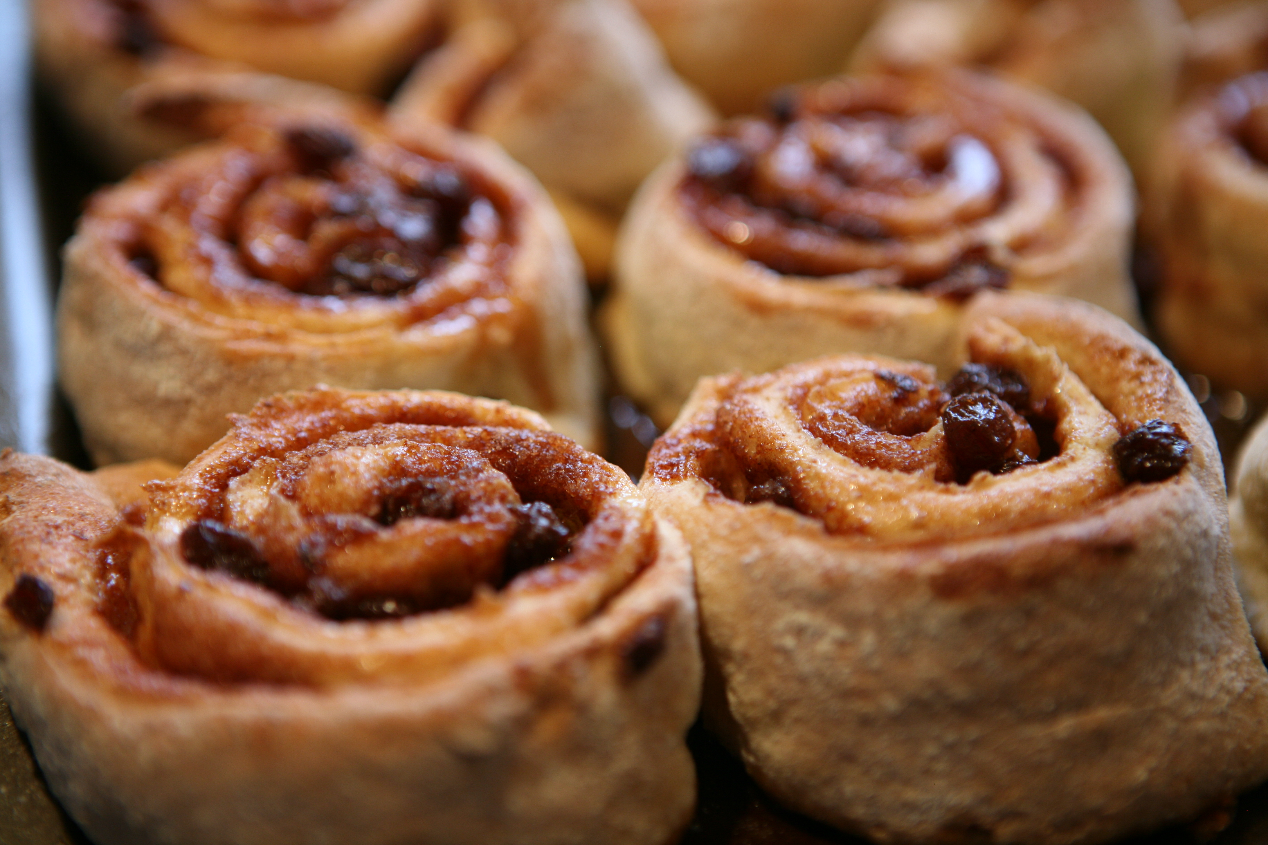 Gluten-Free Cinnamon Rolls Recipes — Dishmaps